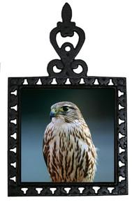 Falcon Iron Trivet