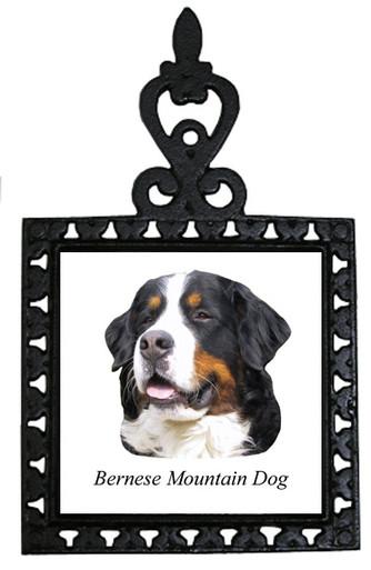 Bernese Mountain Dog Iron Trivet