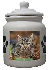 Tabby Cat Ceramic Color Cookie Jar