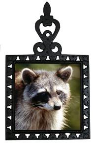 Raccoon Iron Trivet