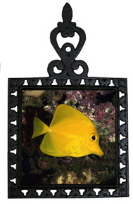 Yellow Tang Iron Trivet