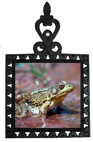 Green Frog Iron Trivet