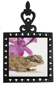 Gecko Iron Trivet