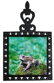 Toad Iron Trivet