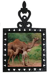 Camel Iron Trivet