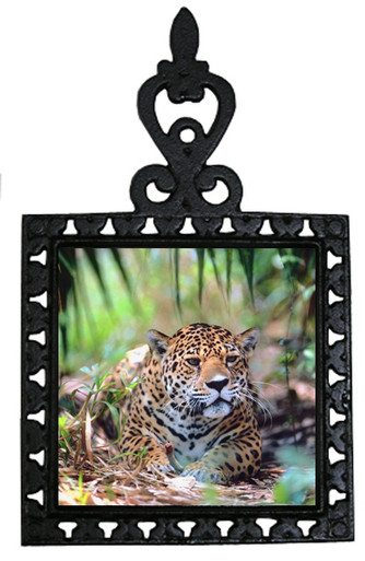 Jaguar Iron Trivet