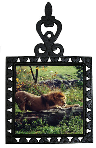 Lion Iron Trivet