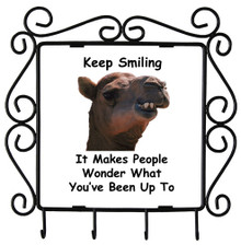 Keep Smiling: Metal Key Holder