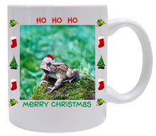 Toad Christmas Mug