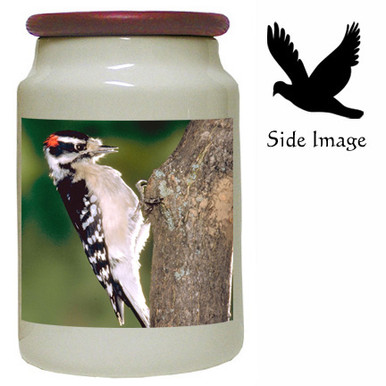 Downey Woodpecker Canister Jar