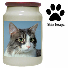 Cat Canister Jar