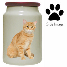 Tabby Cat Canister Jar