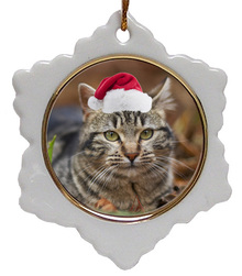 Tabby Cat Jolly Santa Snowflake Christmas Ornament