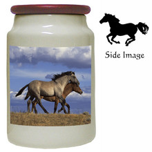 Horse Canister Jar