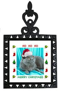 British Shorthair Cat Christmas Trivet