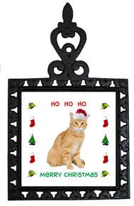 Tabby Cat Christmas Trivet