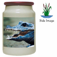 Crocodile Canister Jar