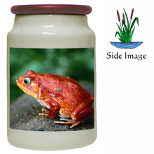 Tomato Frog Canister Jar