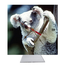 Koala Bear Desk Clock