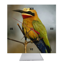 Bee Eater Desk Clock