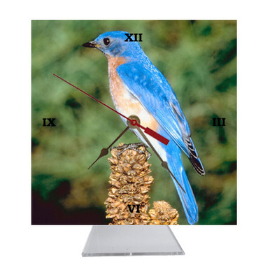Bluebird Desk Clock