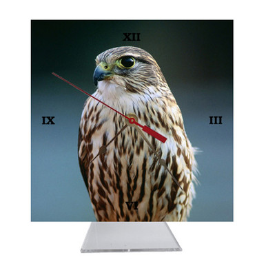 Falcon Desk Clock