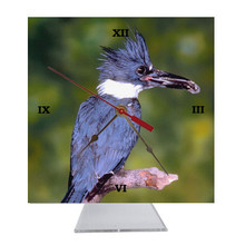 Belted Kingfisher Desk Clock