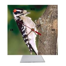 Downey Woodpecker Desk Clock