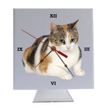 Calico Cat Desk Clock