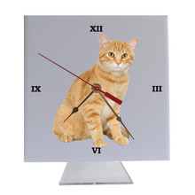Tabby Cat Desk Clock