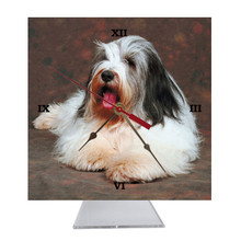 Bearded Collie Desk Clock
