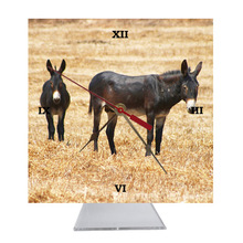 Donkey Desk Clock