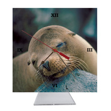 Sea Lion Desk Clock