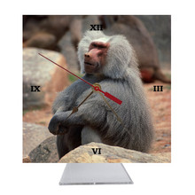 Baboon Desk Clock