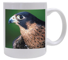 Falcon Coffee Mug