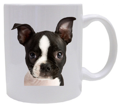 I Love My Boston Terrier Coffee Mug