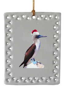 Blue Footed Booby  Christmas Ornament
