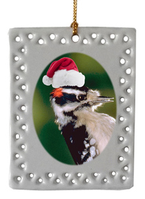 Downey Woodpecker  Christmas Ornament