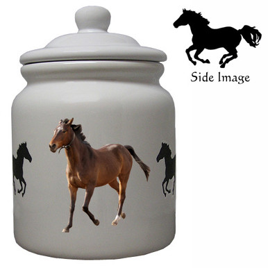 Arabian Ceramic Color Cookie Jar