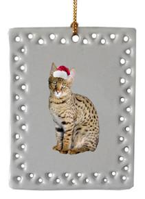 Savannah  Christmas Ornament