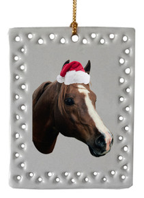 Horse  Christmas Ornament