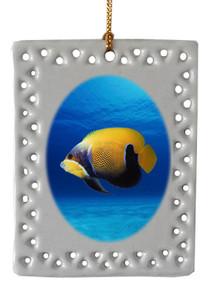 Blue Girdled Angelfish  Christmas Ornament
