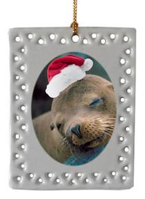 Sea Lion  Christmas Ornament