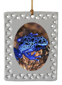 Blue Frog  Christmas Ornament