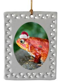 Tomato Frog  Christmas Ornament