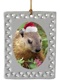 Groundhog  Christmas Ornament