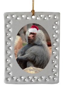 Baboon  Christmas Ornament