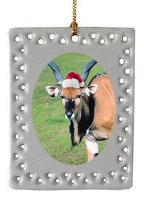 Eland  Christmas Ornament