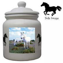 Camargue Ceramic Color Cookie Jar