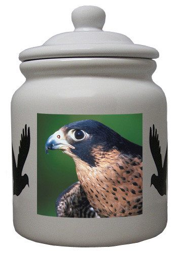 Falcon Ceramic Color Cookie Jar